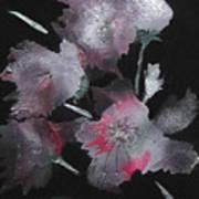 Frosty Flowers Art Print