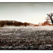 Frosty Landscape Art Print