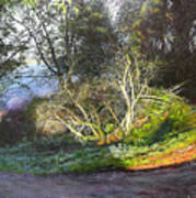 Frosty Morning Near Nant Clwyd, North Wales Art Print