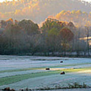 Frosty Morning On The Farm Art Print
