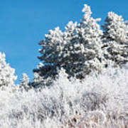 Frosty Mountainside Art Print