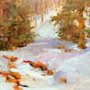 Frozen Creek Art Print