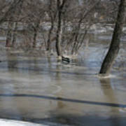 Frozen Floodwaters Art Print
