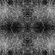 Frozen Grass Abstract In Bw Art Print