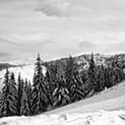 Frozen Valley 4 Bw  Art Print