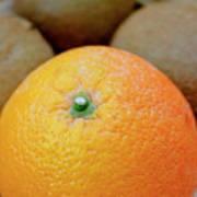 Fruit Basket. Orange. Art Print