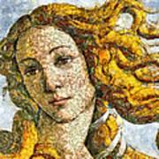 Fruity Venus I Am So Sorry Mr Boticelli Art Print