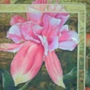 Fucshia Art Print