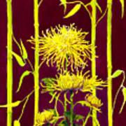 Fuji Mums And Bamboo Art Print by Janis Grau