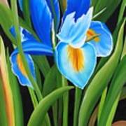 Full Bloom Art Print