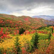 Full-Blown Autumn in the Wasatch Mountains Art Print