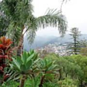 Funchal Maderia Art Print