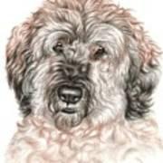Furry Friend Art Print