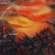 Fury Art Print by Shirley McMahon
