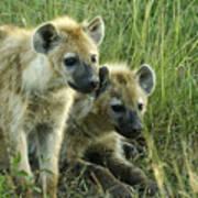 Fuzzy Baby Hyenas Art Print