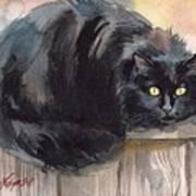 Fuzzy Black Cat Art Print