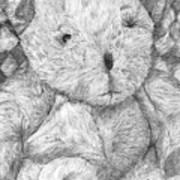 Fuzzy Wuzzy Bear  Art Print