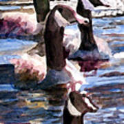 Gaggle Of Geese Art Print
