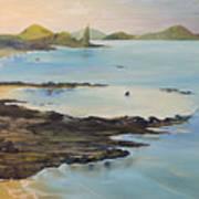 Galapagos2 Art Print