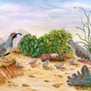 Gambel Quails Day In The Life Art Print
