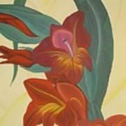 Gandavensis Hybrid Art Print