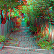 Garden Alley - Use Red-cyan 3d Glasses Art Print