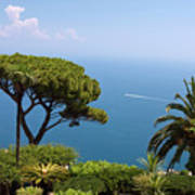 Garden And Bay Of Naples Art Print