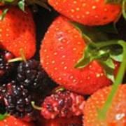 Garden Berries Art Print