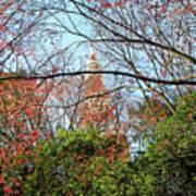 Garden By The Tokyo Tower Art Print