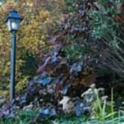 Garden Lamp Post Art Print
