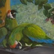 Garden Parrots Art Print