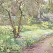 Garden Path Art Print by Mildred Anne Butler