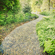 Garden Path - Photography Art Print
