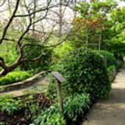 Garden Paths Art Print