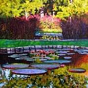 Garden Ponds - Tower Grove Park Art Print