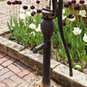 Garden Pump From The Old Days Art Print