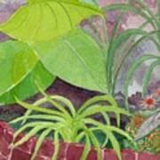 Garden Scene 9-21-10 Art Print