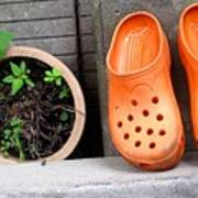 Garden Shoes Waiting Art Print