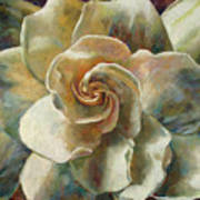 Gardenia Art Print by Billie Colson