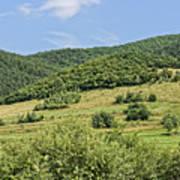 Gardening field near Orlat Sibiu county Romania Art Print