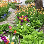 Gardens Of Tulips Art Print