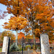 Gate And Driveway 3 Art Print