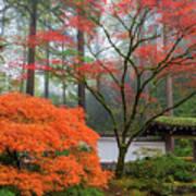 Gateway To Portland Japanese Garden Art Print