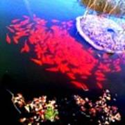 Gather Gold Fish Art Print
