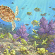 Gathering In The Reef Art Print