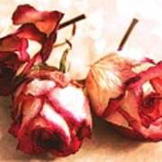 Gathering Rosebuds Art Print