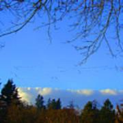 Geese Across The Sky Art Print