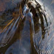 Gentle River Ripple Swirl Vertical Art Print