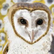Geometric Barn Owl Art Print