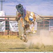 George Barton Mcdermitt Nevada 2008 Art Print
